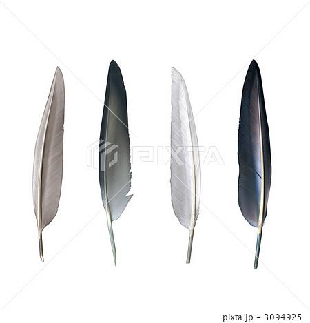 鳥の羽 羽根 羽毛 複数のイラスト素材 Pixta