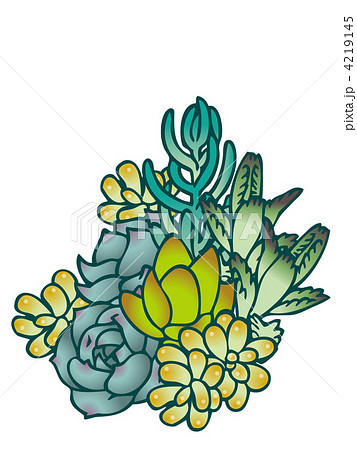寄せ植え 多肉植物 イラストのイラスト素材 Pixta