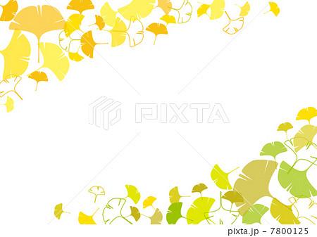 銀杏並木のイラスト素材 Pixta