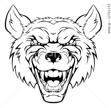 オオカミの正面顔 狼のイラスト素材 Pixta