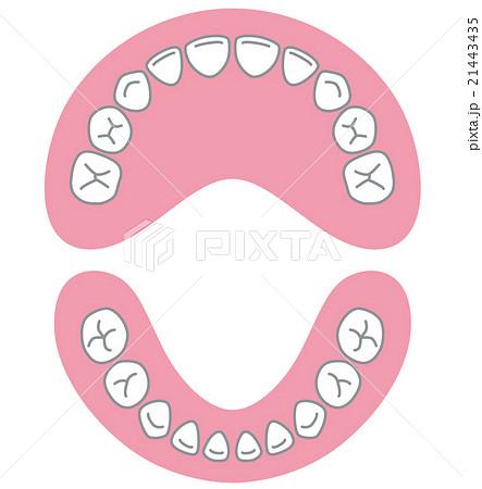 前歯のイラスト素材 Pixta