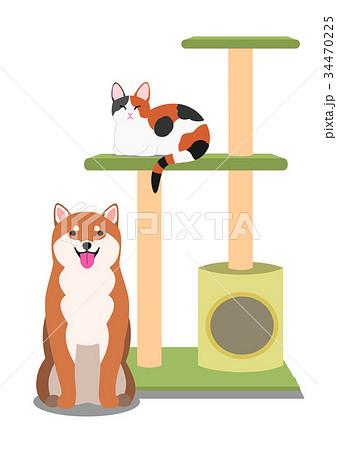 キャットタワーと猫と犬