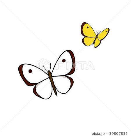 モンシロチョウ 蝶 チョウ 白いのイラスト素材 Pixta