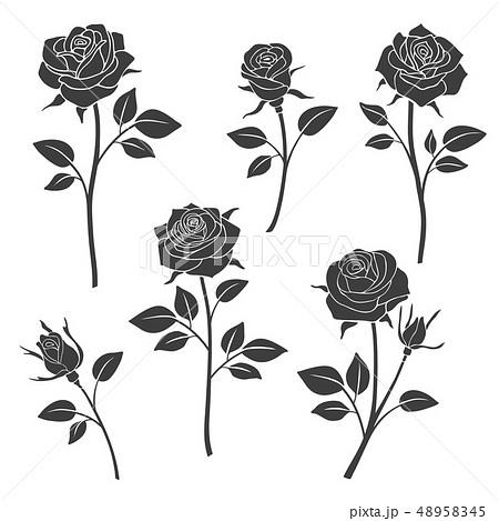 薔薇 イラスト 影 モノクロの写真素材